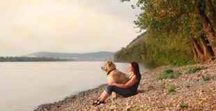 Peut-on transmettre un contrat d'assurance animal (divorce, séparation, décès …) ?