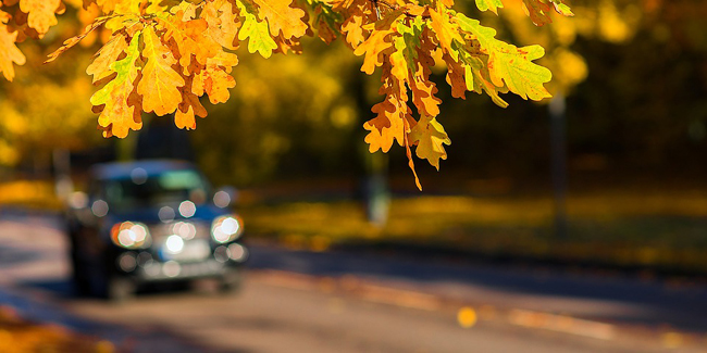 Assurance auto pour moins de 5 000 km par an