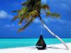 RC Pro pour professionnel du tourisme : comparez, choisissez !
